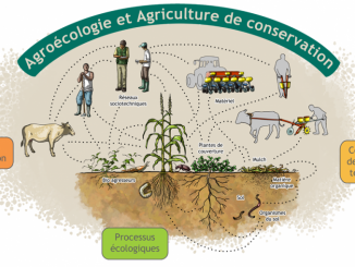agrotrip-projet
