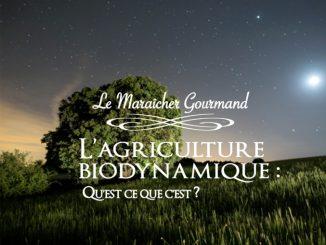 La Biodynamie : Une agriculture d'hier & de demain - Le maraicher gourmand