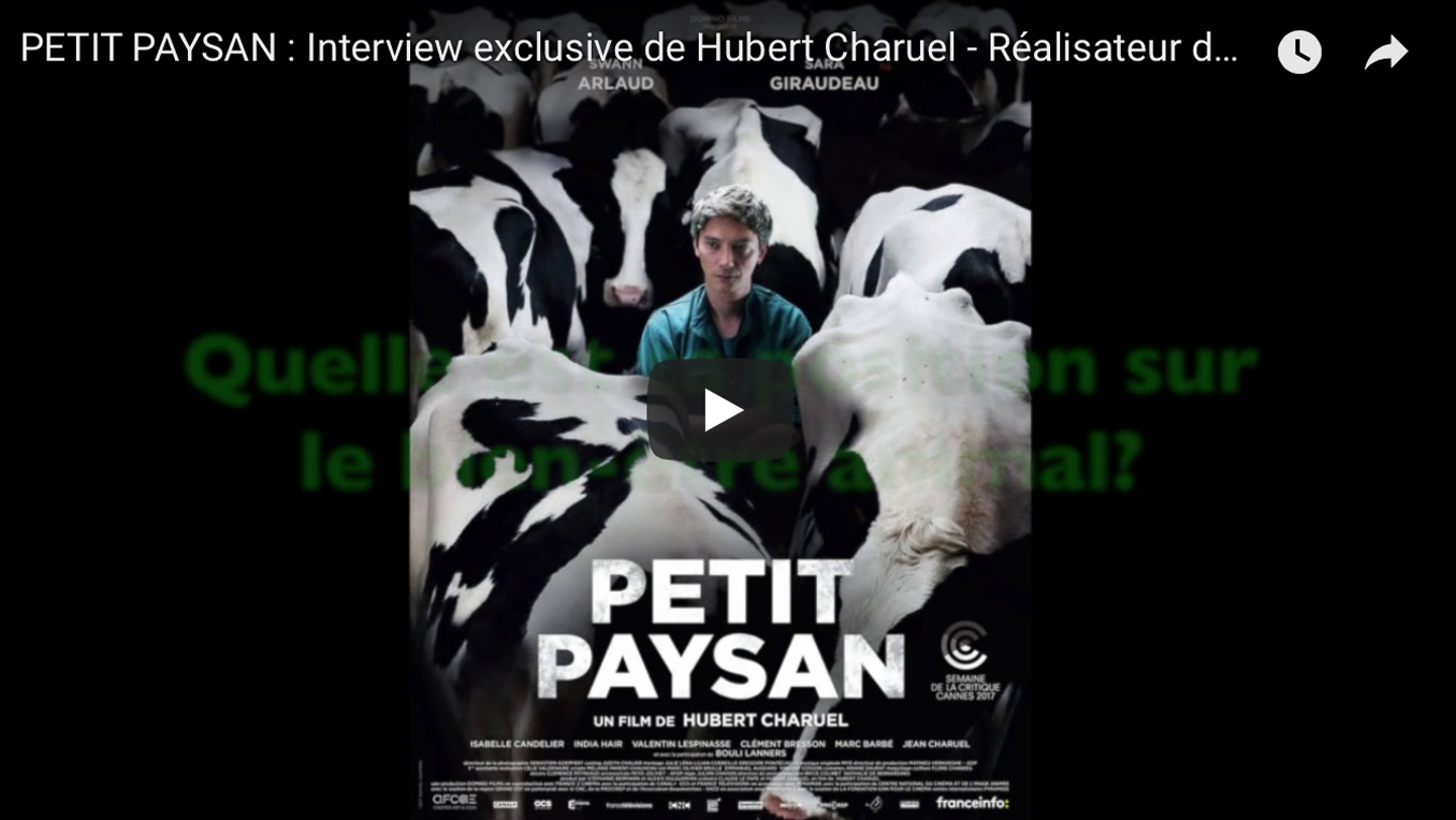 INTERVIEW EXCLUSIVE DU REALISATEUR DE PETIT PAYSAN