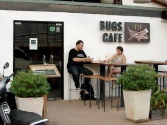 davy-bug-cafe